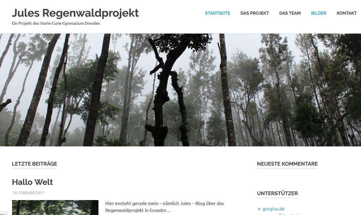 Jule und ihr Regenwaldprojekt